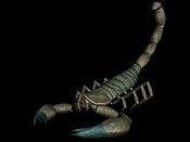 aprendizaje low Poly-escorpion.jpg