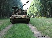 GEPaRD the enemy -gepard3.jpg