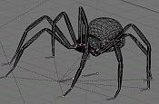 Rigging a spider-17.jpg
