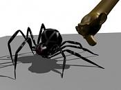 Rigging a spider-23.jpg