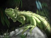 2D -   Iguana  -iguanafinal1024_2.jpg