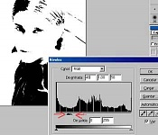 Posterizar fotos pop art en photoshop-4.jpg