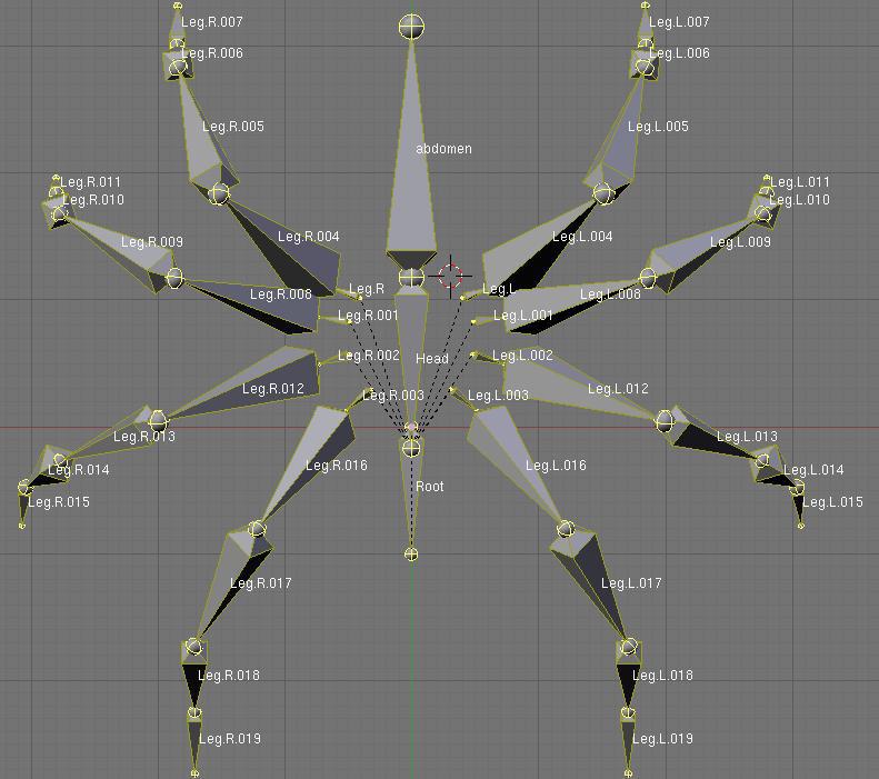 -esqueleto-arana-11.jpg