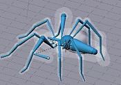 Esqueleto de una araña-esqueleto-arana-13.jpg