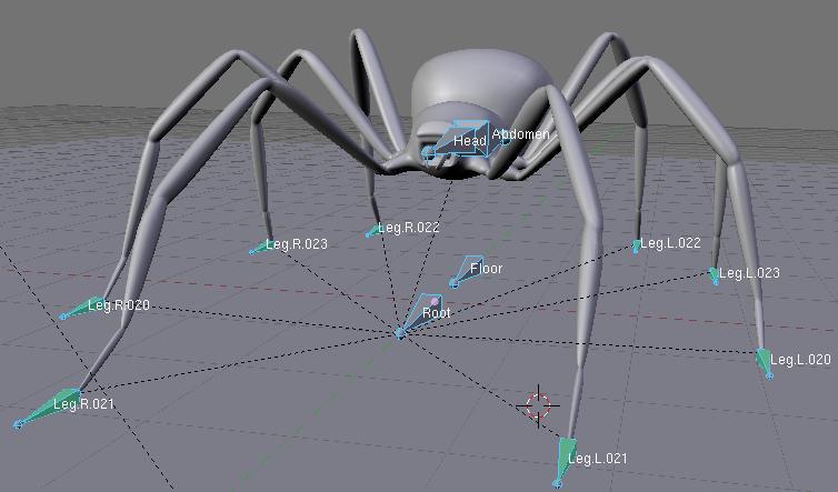 -esqueleto-arana-20.jpg