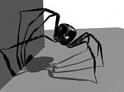 Esqueleto de una araña-esqueleto-arana-21.jpg