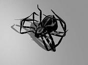 Esqueleto de una araña-esqueleto-arana-24.jpg