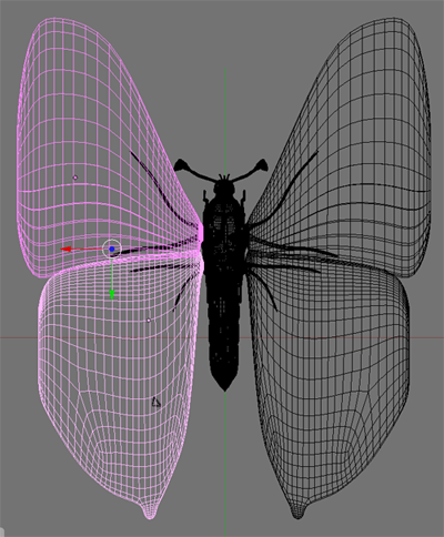 Modeling a Butterfly-pic_28.png