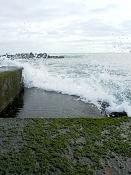 leica y pol-mar-1000242.jpg