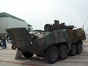 Mowag Piranha III C-63rt88yws6.jpg
