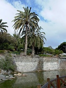 leica y pol-piedras-1000157.jpg