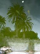 leica y pol-paisaje-1000156.jpg
