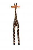 Modelando jirafa-jirafafront.jpg
