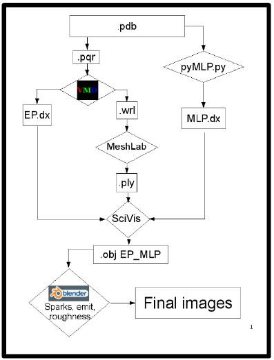 animation Molecular-6.jpg