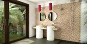 Un baño mas-casa-060060bx.jpg