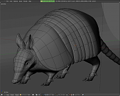 armadillo-mulin_wires.png