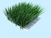 Yafaray Particles with Blender part I-grassadvfinall.jpeg
