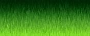 Crear textura de hierba-imagentrasburnwf3.jpg