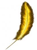 Crear plumas 2d-crear-pluma-final.jpg