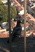 Fotillos de principiante-italie-082.jpg
