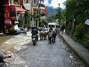 a 5 husos horarios - Vietnam 2008-sapa-vacas.jpg
