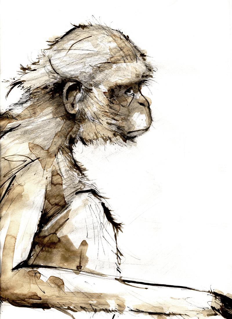 Dibujos rapidos , Bocetos  y apuntes  en papel -mono.jpg