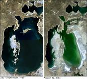 El cambio climatico no empeora  Da igual, me lo invento y punto :D-aral_sea_1989_2003.jpeg
