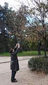 Quedada en Madrid  alguien se apunta -12.jpg