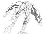 La galeria de Jevitin-spiderman_lw.jpg