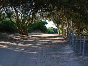 Camino de arena-8221787.jpg
