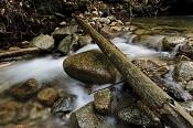 un rio,algun tutorial -141887-moving_water_original.jpg
