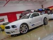 Mustang Saleen 2010 3d-2006-ford-mustang-saleen-s281.jpg