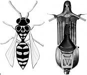 Blueprint vespa-vespa.jpeg