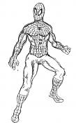 sketchs y algunos dibujos a tableta rapidos-spideythin.png
