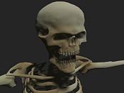 modelado esqueleto-1.jpg