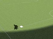 Cómo crear pasto maleza-campofutbol.jpg