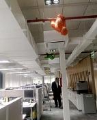 El Efecto Googleplex en Buenos aires-3d-eichnewsonline.jpg