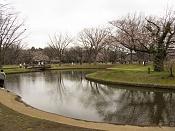 Viajes: mira que esta lejos japon-parque-yoyogi_01.jpg
