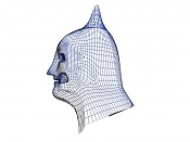batmancillo-wire2qk2.jpg