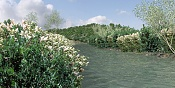 el rio de mi pueblo-el-rio-de-mi-pueblo.jpg