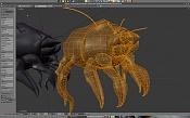 acaros - animal microscopico -acaro_mo-2.jpg