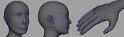 Mi primer humano   -head-and-handwire.png