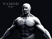 NaMOR Wip-1.jpg