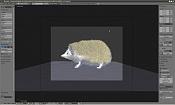 Erizo un animal exotico editado-erizo_mo-0.jpg