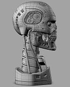 t800 endoskull-camara_4_wire.jpg