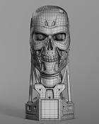 t800 endoskull-camara_7_wire.jpg