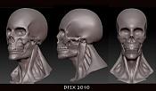 Sketchbook Felipe Gonzalez  DFEX -skull_dfex_sketchbook_02.jpg