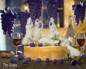 The Grape   -ratuva_3t.jpg