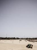 leica y pol-camellos-1000319.jpg