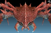 Cangrejo Dragon, por fin terminado   XD-far266.jpg